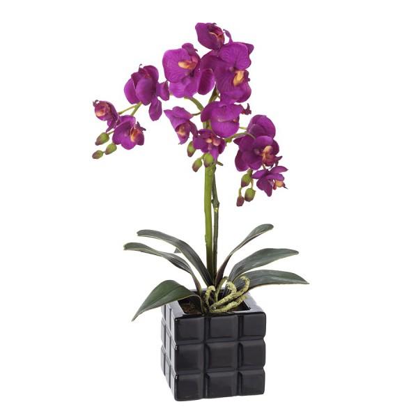 orquidea artificial la cañada