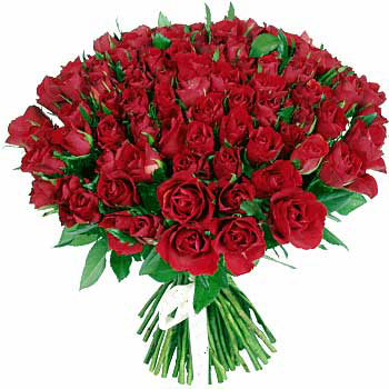 ramo-de-rosas-rojas1