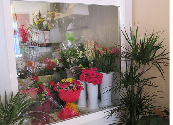 nuestra-tienda-camara-flores